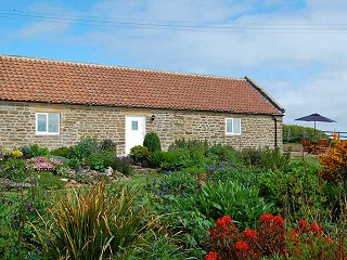 News from Travellers Rest Farm and Holiday Cottage